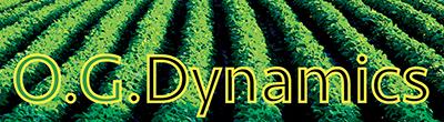 O.G. Dynamics